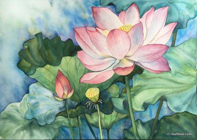 """""""Summer Lotus"""""""