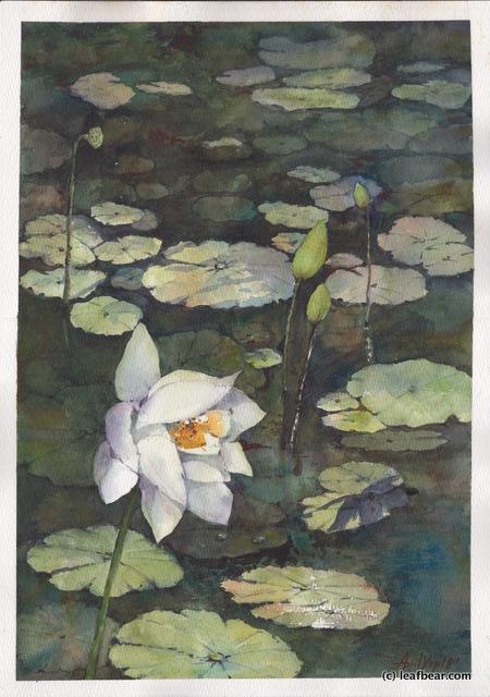 Lotus Pond at Bukit Kepayang